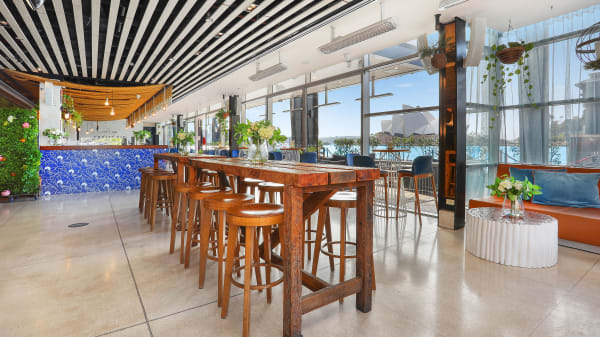 Cruise Bar, The Rocks (NSW)